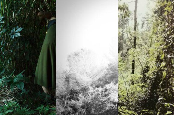 FIRENZE | FALEGNAMERIA FROSECCHI<br>ESPOSIZIONI FOTOGRAFICHE<br>A CURA DI FONDAZIONE STUDIO MARANGONI
