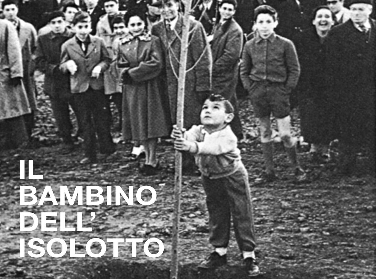 BAMBINO_ISOLOTTO